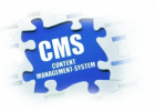 Content Management System (CMS) Training in Lebanon